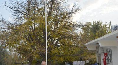 Şehidin evine dev Türk Bayrağı asıldı