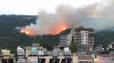 Yangında, risk altındaki evlere tahliye kararı