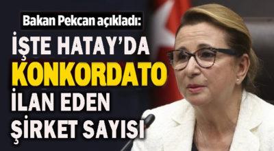 Türkiye'de 846 şirket iflas etti.. Peki ya Hatay'da?