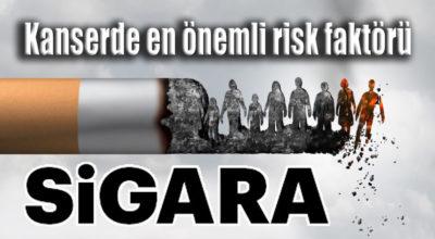 Kanserde en önemli risk faktörü; Sigara