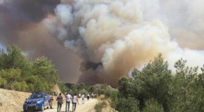 Batıayaz'ın muazzam yeşilliği yandı, içimiz yandı!