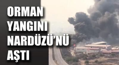 Orman yangını Nardüzü'nü aştı