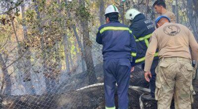 Karayılan'da 2 hektar yandı!