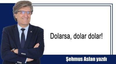Dolarsa, dolar dolar!